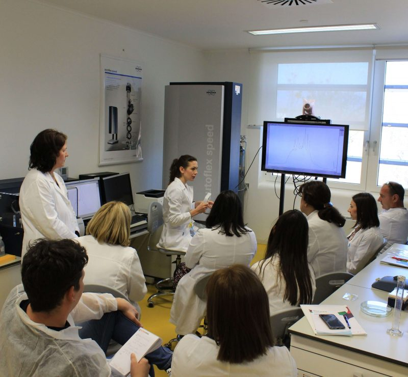 Analiza Identifikacija I Kvantifikacija Proteina 4 800x740